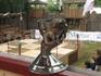 главная награда победителю - Кубок