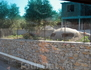 Еще увидели бункер, в чьем-то частном саду