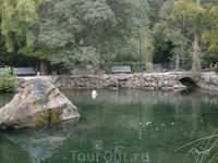 вода в озере  кристально чистая