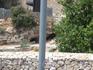 Археологический парк Иерусалима. Раскопки Храмовой горы.