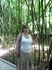 Никитский ботанический сад - бамбуковая роща
