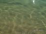 чистейшая вода на пляже в Обзоре