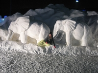Парк снежных скульптур