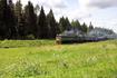 За время нашей поездки мы пересекли несколько железнодорожных переездов, но поезд повстречался нам всего один раз.