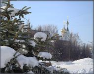 вид на храм со стороны ул.Мичмана Павлова