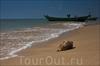 Лучший пляж Фукуока - Лонг Бич