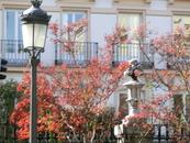 Строительство началось в 1750 году, завершилось в 1757 году. Архитектором был француз избран François Carlier (автором знаменитых садов в загородной королевской ...