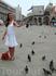 голуби на площади Сан Марко