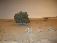 Это все макеты... но выглядят как настоящие деревья, пустыня, камушки...