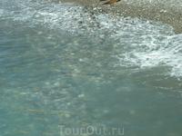 Люблю Черное море за его прозрачность в штиль
