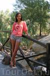 Зоопарк Фригиа - Friguia Park - между Сусом и Хаммаметом
