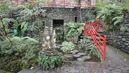 Тропический парк Монте