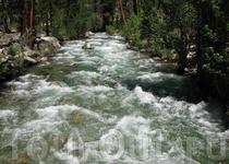 Река Пехотинца (Kern River). Очень полноводная и мощная по всей длине. Мест для перехода очень мало.