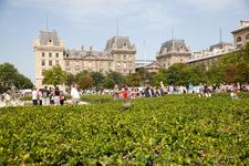 Двор Notre Dame de Paris