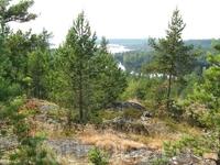 Вид на Ладогу со скалы рядом с озером