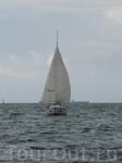 В открытое море......