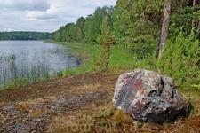 Камни придают особую живописность ландшафту.