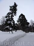 в зимнем парке...