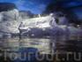 Океанариум Siam Ocean World там даже пингвинятки есть, очень славные создания, смешные такие сидели под лампами и грелись (наверно думают, что это солнце) вот ...