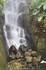 Водопад находится в биоме тропических лесов.