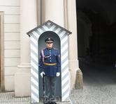 чешский воин