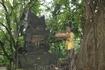 Жертвоприношения духам леса