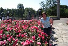 Шикарнейшие розы растут в тамошнем парке