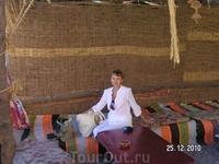 Поездка в монастырь св. Екатерины. остановка у бедуинов