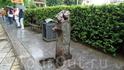 Питьевой фонтанчик,их много в городе,они все разные,но этот,на наш взгляд,самый оригинальный.
