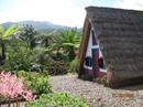 о.Мадейра - место, куда хочется вернуться!