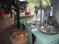 Минифабрика обработки кокосов. Получают стружку, ее варят, есть еще молоко. Скорлупу как дрова используют. в итоге вкусные конфетки.