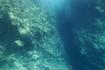 вид из подводной части Yellow submarine
