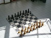 играю белыми!
