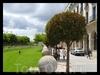 Испания, Бургос