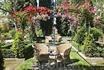 прекрасные сады утопающие в зелени и благоухании