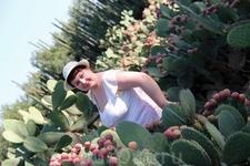 На кактусовой плантации