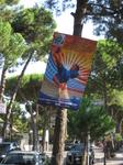 В начале сентября в Равенне проходил чемпионат мира по пляжному футболу. Спортсмены жили в отелях ММ.