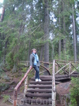 Деревянная лестница парка