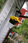 Желтые цветы тоже в моде