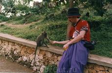 Парк нахальных обезьян - не будет орешков, отнимут шляпу.