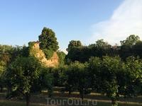 Рощи вокруг крепости Терра-дель-Соле