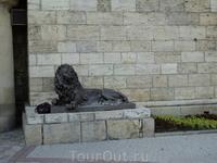 лев у Провала чью-то сумку охраняет