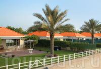 Фото отеля Barracuda Beach Resort