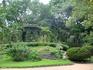 Цветочная беседка Ботанического сада