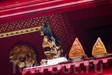 Птицы и храм