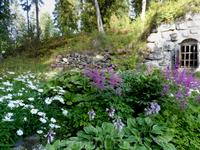 В ботаническом саду монастыря.
