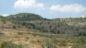 Иерусалимский лес. На подъезде к Иерусалиму.