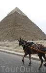 Египетский пирамиды. До сих пор вокруг них царит атмосфера средневековья. Вокруг полно всякой живности, лошади, ослы, верблюды, женщины в паранже...