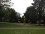 парк тростей