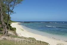 Наиболее впечатляющий маршрут прогулки на Острове - 14 км вдоль Южной береговой линии. Этот тур организуется для активных и любознательных посетителей ...